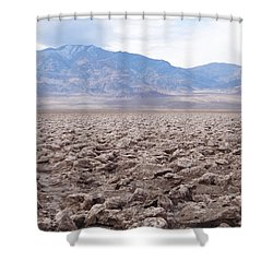 Shower Curtain featuring the photograph Self-reflection  by Brandy Little