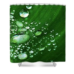 Growing Carefully Shower Curtain