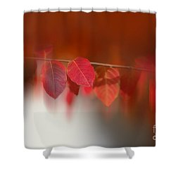 Semi Abstract Red Leaves Shower Curtain