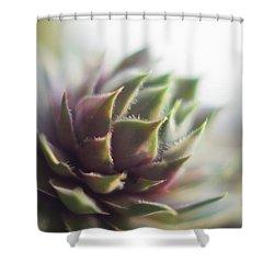 Shower Curtain featuring the photograph Sempervivum Prickles by Scott Lyons