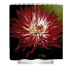 Sensitivity Shower Curtain