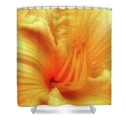 Sensuous Lily Shower Curtain by Kristin Elmquist
