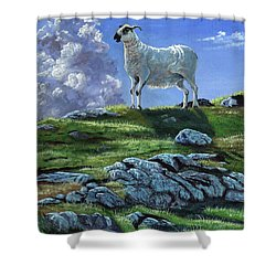 Sentinal Of The Highlands Shower Curtain