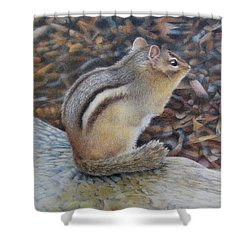 Sentinel Shower Curtain by Pamela Clements