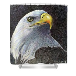 Shower Curtain featuring the painting Sentinel by Phyllis Howard