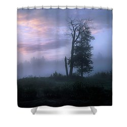 Sentinels In The Valley Shower Curtain by Dan Jurak
