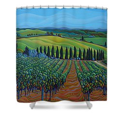 Sentrees Of The Grapes Shower Curtain