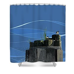 Sentries Shower Curtain