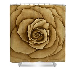 Sepia Rose Shower Curtain