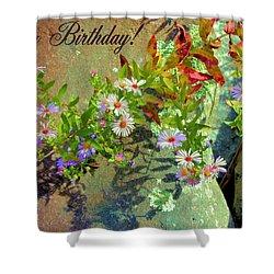 September Birthday Aster Shower Curtain by Kristin Elmquist