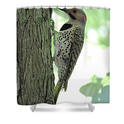September Flicker Shower Curtain