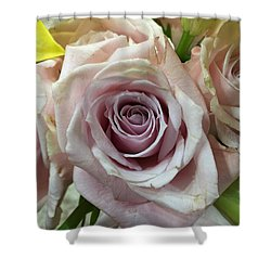 September Rose Shower Curtain by Russell Keating