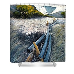 September Shadows Shower Curtain