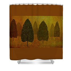 September Trees  Shower Curtain by David Dehner