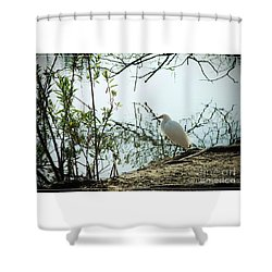 Sepulveda Basin Crane 1 Shower Curtain