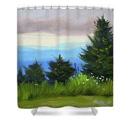 Shower Curtain featuring the painting Sequim Vista by Nancy Merkle