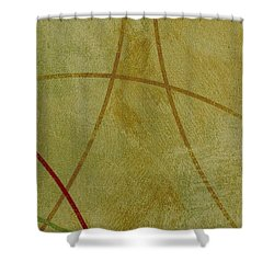 Ser. 1 #06 Shower Curtain