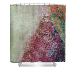 Ser.1 #08 Shower Curtain