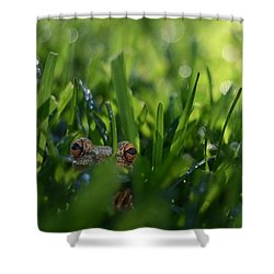 Shower Curtain featuring the photograph Serendipity by Laura Fasulo