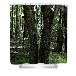 Shower Curtain featuring the photograph Serene In Green by Michelle Audas