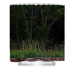 Shower Curtain featuring the photograph Serene Morning by Craig Wood