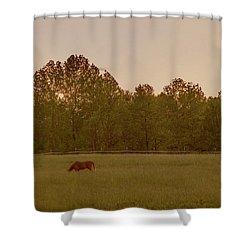Serene Pasture Shower Curtain