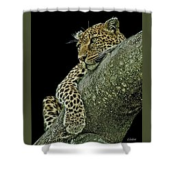 Serengeti Leopard 2a Shower Curtain