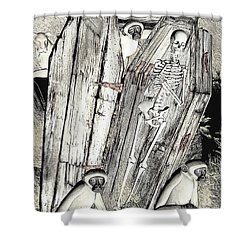 Serengeti Scavengers Shower Curtain