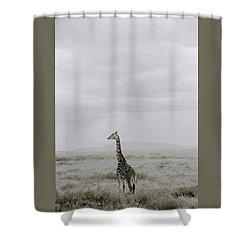Serengeti Solitude Shower Curtain by Shaun Higson