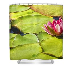 Serenity And Solitude Shower Curtain