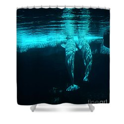 Serenity  Shower Curtain by Linda Shafer