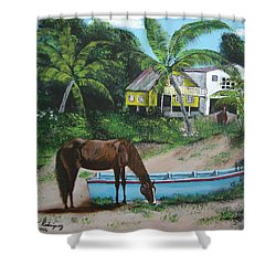 Serenity Shower Curtain by Luis F Rodriguez