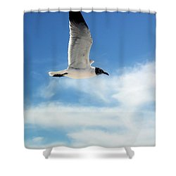 Serenity Seagull Shower Curtain