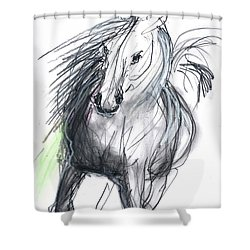 Sergei Shower Curtain