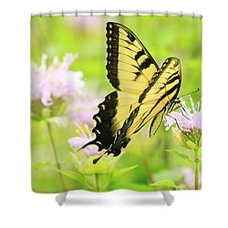 Series Of Yellow Swallowtail #4 Of 6 Shower Curtain