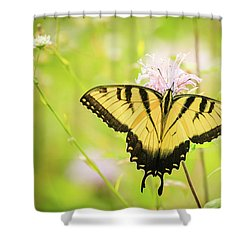 Series Of Yellow Swallowtail #6 Of 6 Shower Curtain