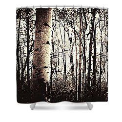 Series Silent Woods 3 Shower Curtain