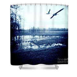 Series Wood And Water 3 Shower Curtain