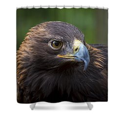 Shower Curtain featuring the photograph Serious by Andrea Silies