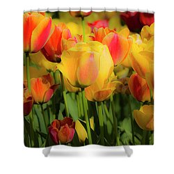 Shower Curtain featuring the photograph Seriously Spring by Wendy Wilton