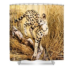 Serval Shower Curtain