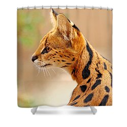 Serval - Extreme Hunter Shower Curtain