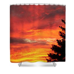 Desert Sunburst Shower Curtain