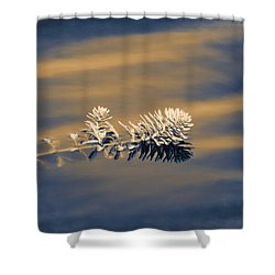Shower Curtain featuring the photograph Set Apart by Carolyn Marshall