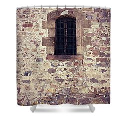 Shower Curtain featuring the photograph Set In Stone by Colleen Kammerer