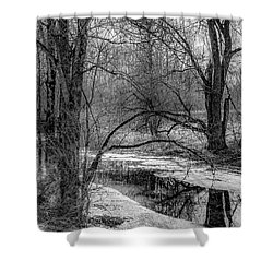 Shower Curtain featuring the photograph Set On Defrost by Kendall McKernon