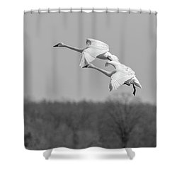 Shower Curtain featuring the photograph Setting Down 20176-1 by Thomas Young