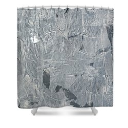 Shabby02 Shower Curtain by Emerico Imre Toth