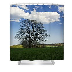 Shade Shower Curtain