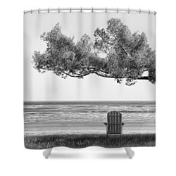 Shade Tree Bw Shower Curtain by Mike McGlothlen